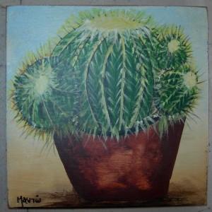 cactus6_